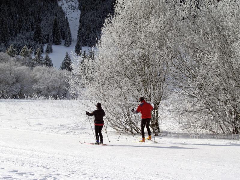 Cross-country ski in the Allgoi