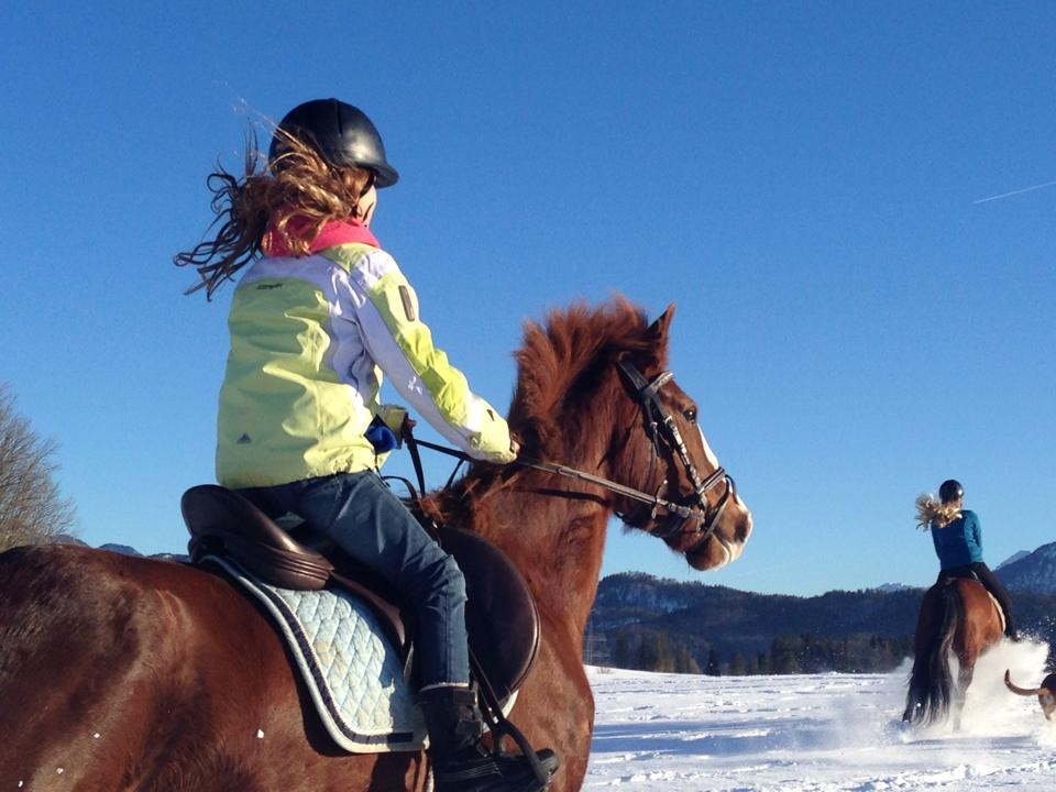 Horseback riding on the Weissensee pony and horse farm in Fussen